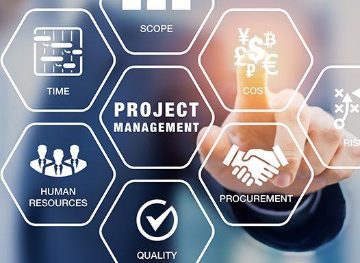 Project Management per preparazione Esame PMP in Virtual Class